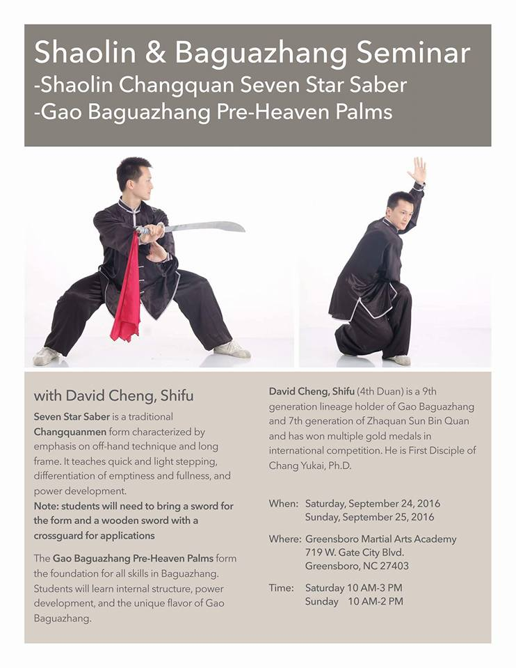 Shifu David Cheng Seven Star flyer